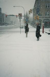 MBM.Buffalo.snow.1