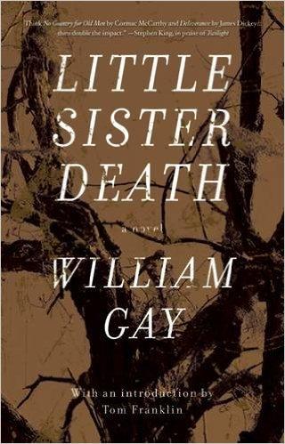 V.LittleSis.Gay