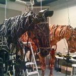 War.Horse.reh.AN